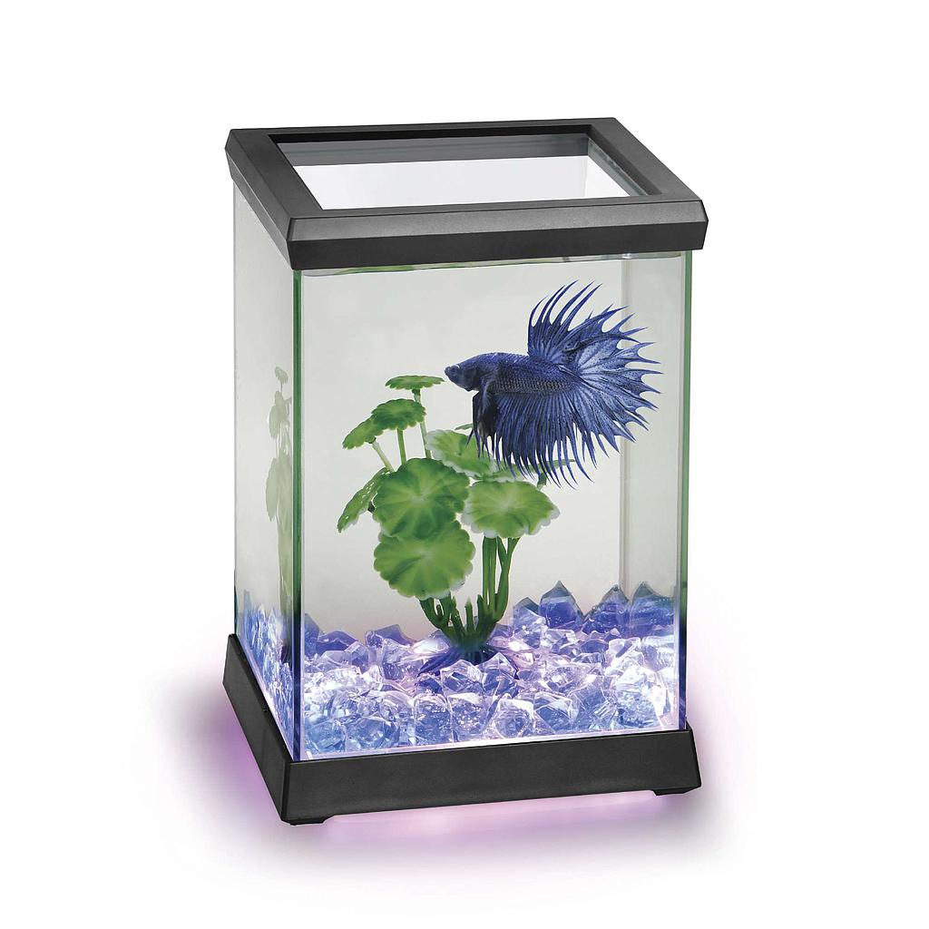 Betta Space LED